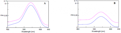 Absorption spectra of samples A and B before (purple) and after (blue) filtration